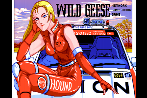 Wild Geese - Network Simulation Game
